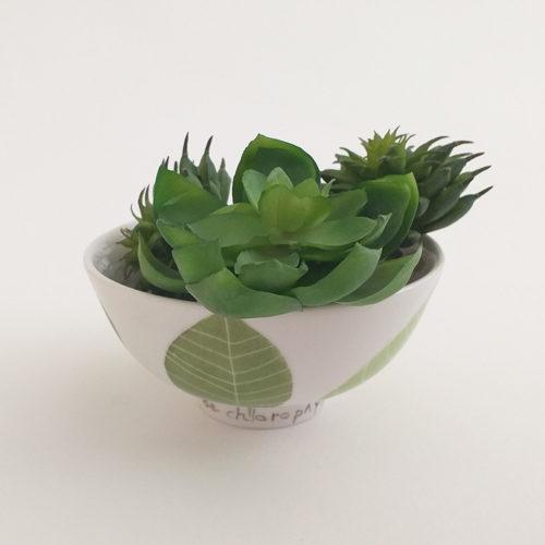 bol de petite taille en porcelaine. Collection Chlorophylle, peint à la main